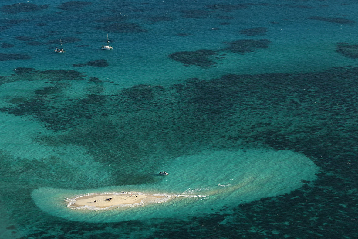 An aerial view of Vlassof Cay in the Great Barrier Reef