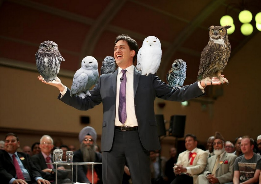 Huffington Post imagined how Ed Miliband would deliver an 'owl for policy'