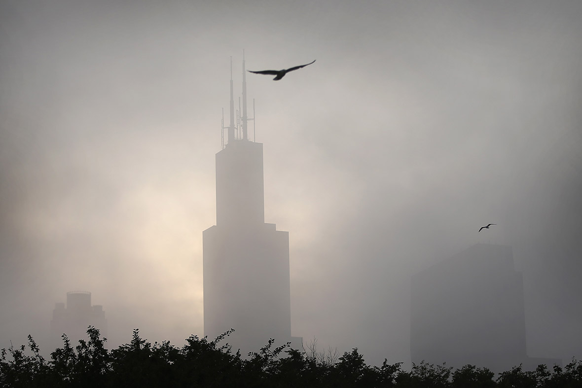 fog chicago