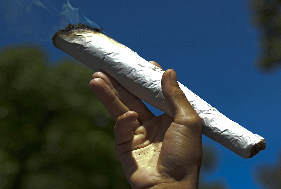 British Medical Association will hear using cannabis - like in the enormous joint above, should not be a criminal matter