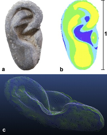 How a Terracotta soldier's ear is digitally mapped onto the computer