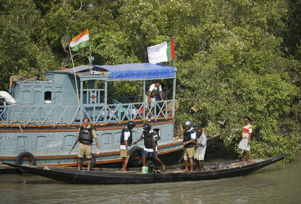 India tiger attack in Sundarbans