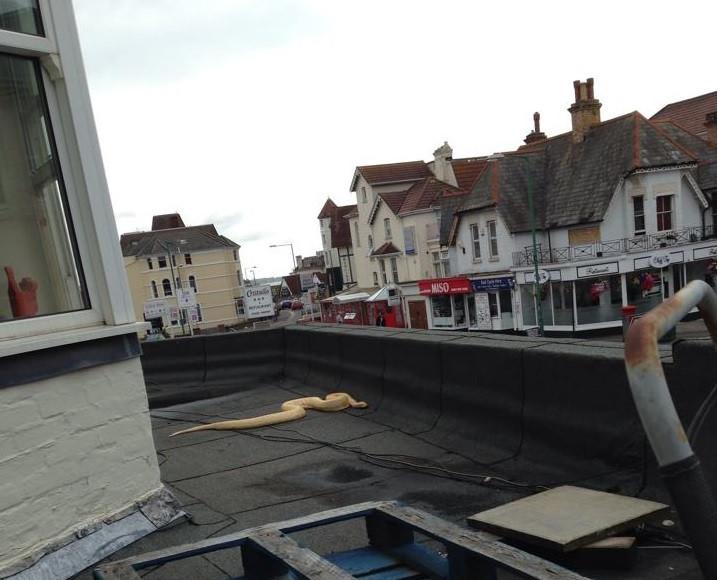 Bournemouth Python