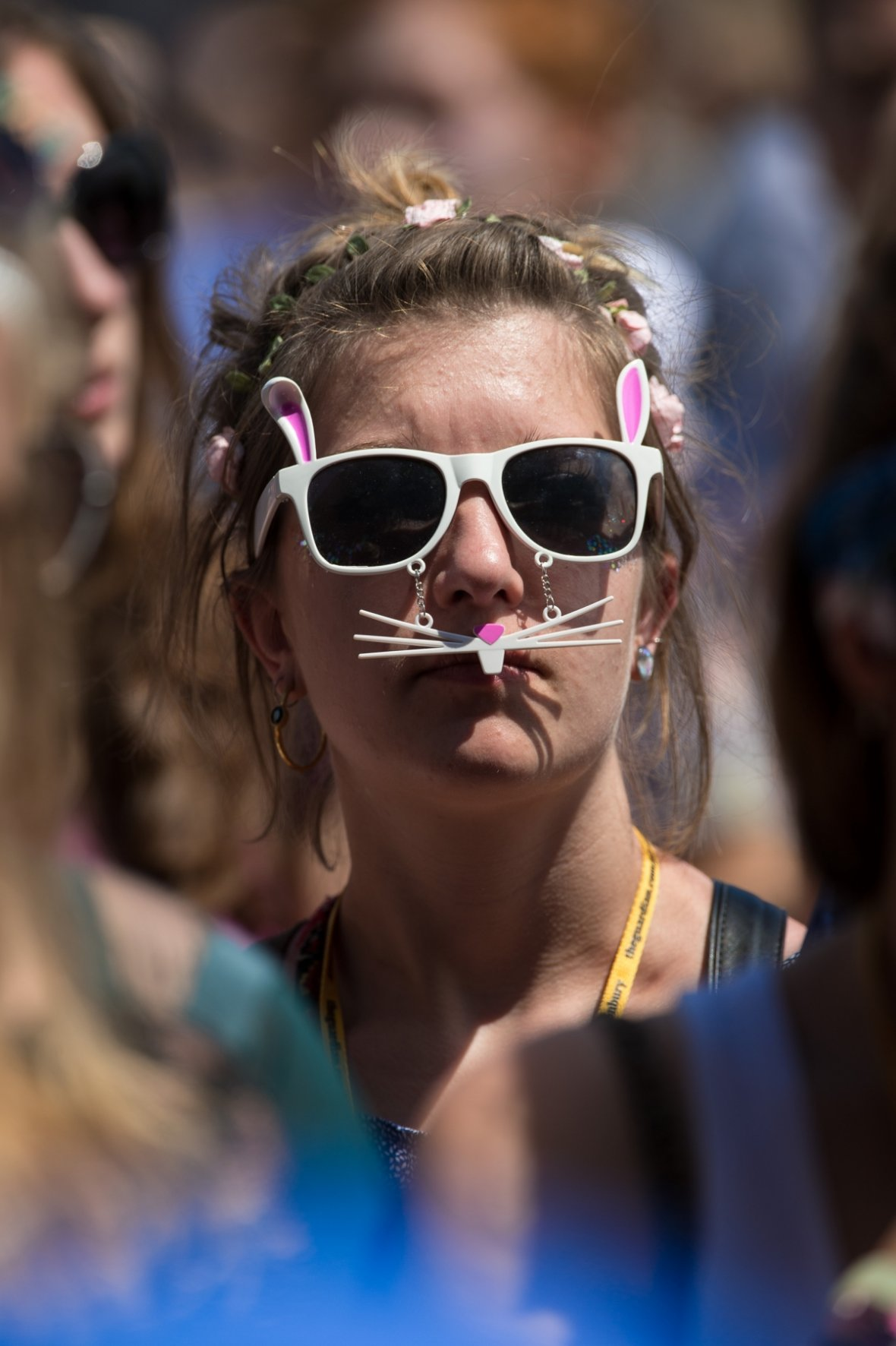 Some people think Glasto is the cat's whiskers