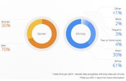 Google diversity info