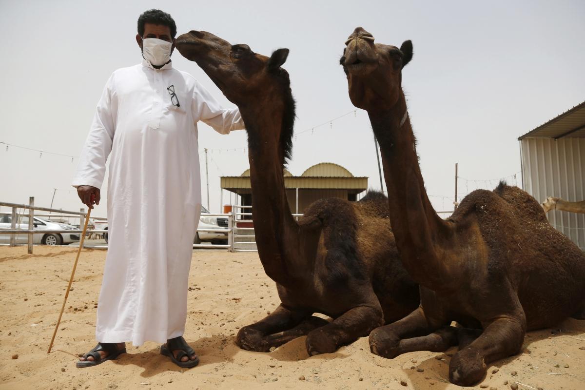 saudi arabia camel man