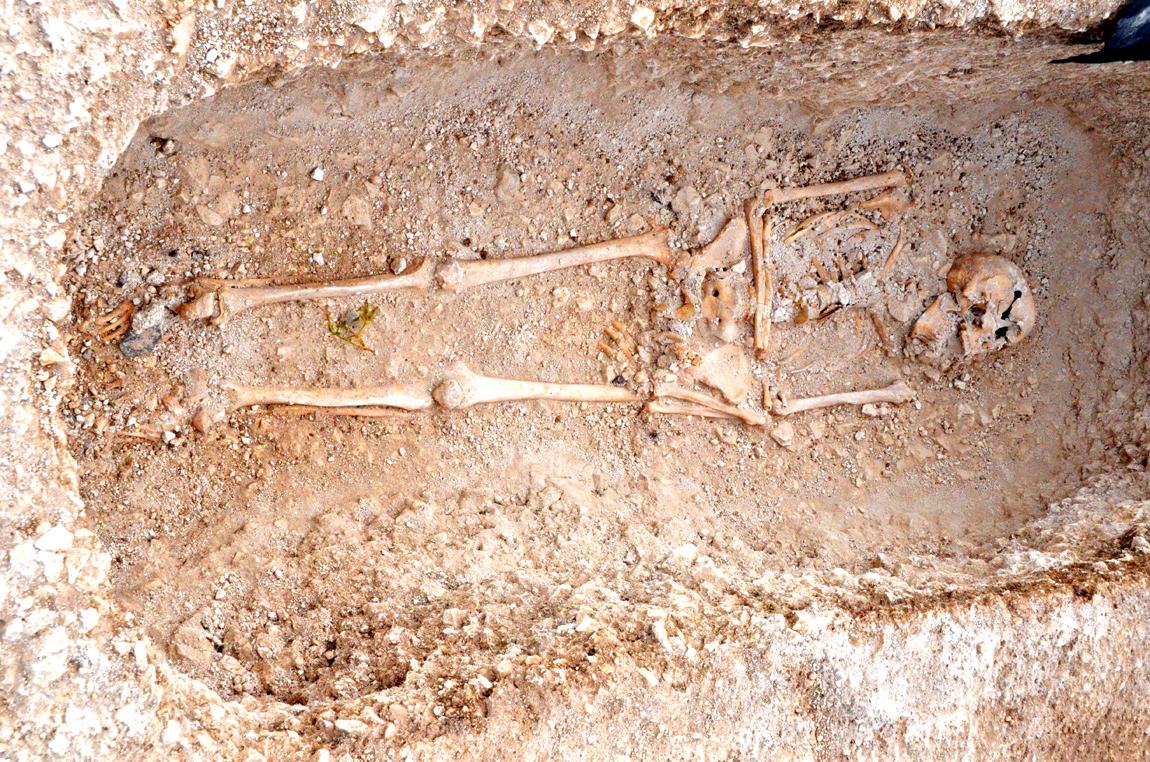 Skeletons of Roman family found in Dorset 2