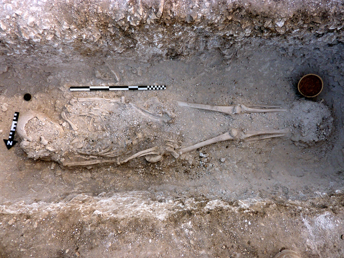 Skeletons of Roman family found in Dorset 4