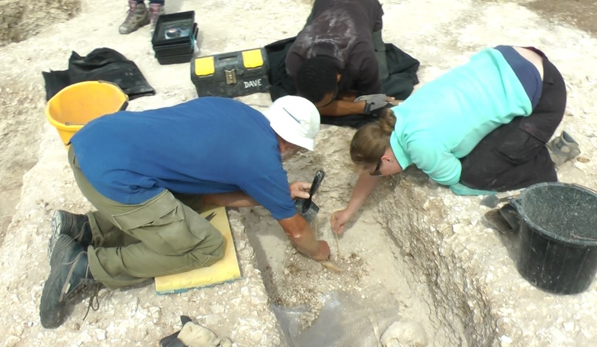 University Students Discover Family of Skeletons by Roman Villa