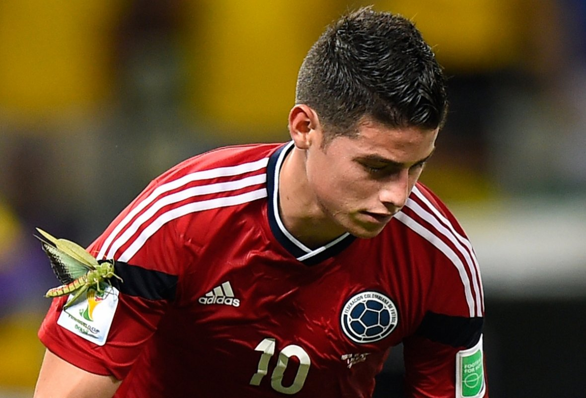 The locust has landed: The strangest moment of the World Cup as a huge insect attaches itself to Colombia's midfielder James Rodriguez
