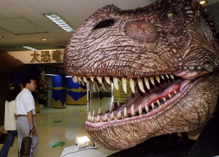 The Tyrannosaurus rex was a distant relative of the Gorgosaurus