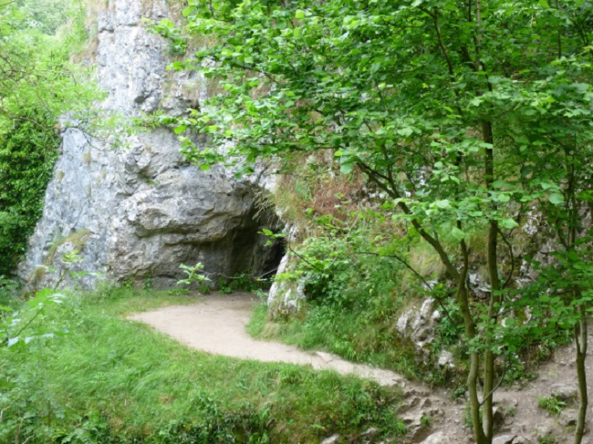 Reynard's Kitchen Cave