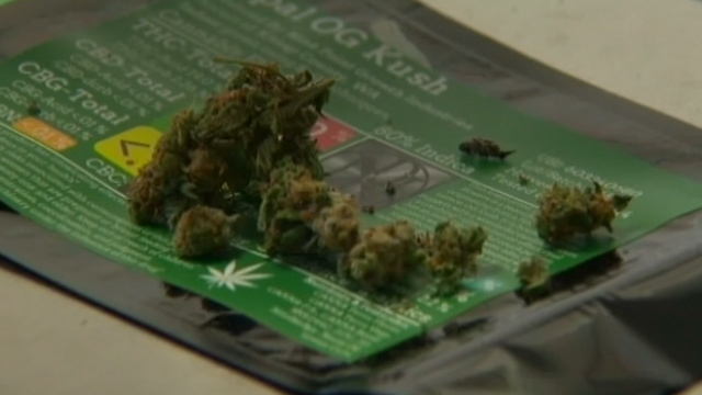 Marijuana Shortage Seen ahead of Washington State Retail Pot Rollout
