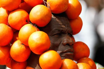 kenya oranges