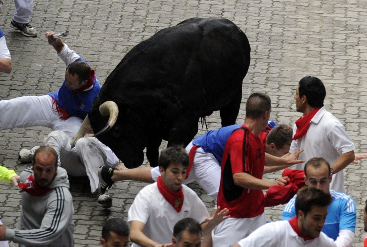 the pamplona bull run danger bull s A bull from the miura ranch gores a 'mozo' or runner at the estafeta street during the eighth bull run at  milligan's time in pamplona  new york post.