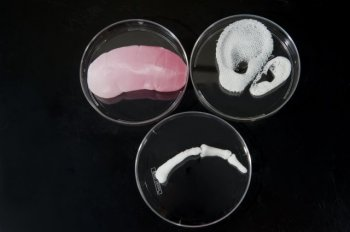 3D-printed body parts