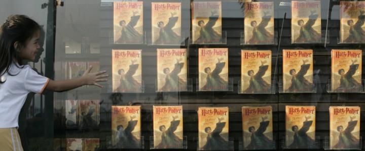 A Harry Potter fan