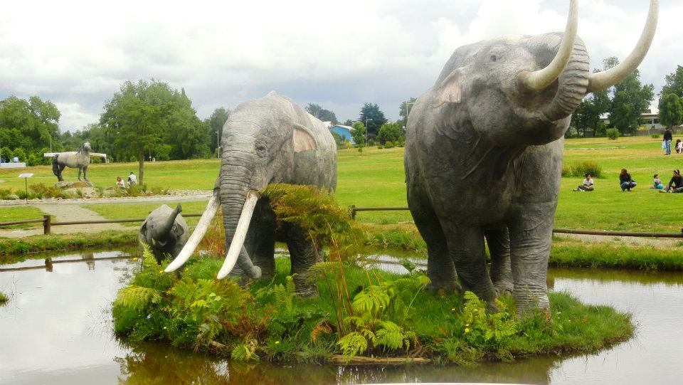gomphothere models