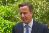 Malaysia Airlines MH17: David Cameron Calls For Swift Investigation