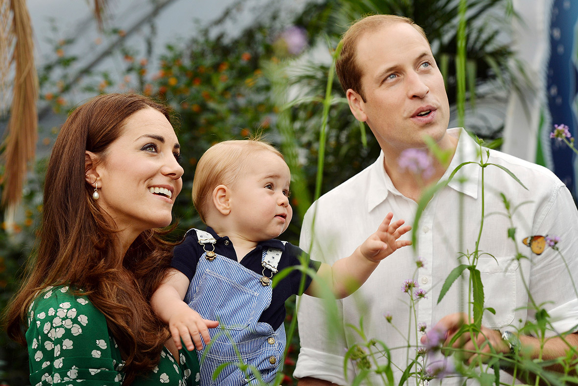 prince george butterfly