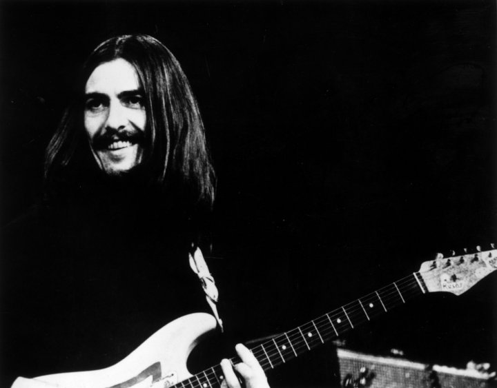 Tree planted in memory to Beatle George Harrison destroyed by beetles