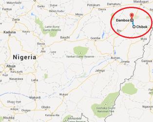 Damboa Nigeria map