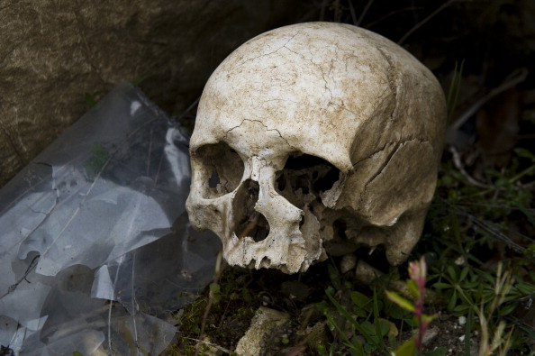 Over 400 skeletons were discovered in a mass grave high up in the Andes