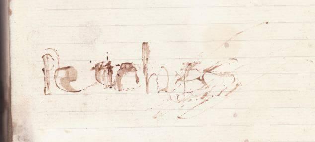 Peaches Geldof blood scrawl