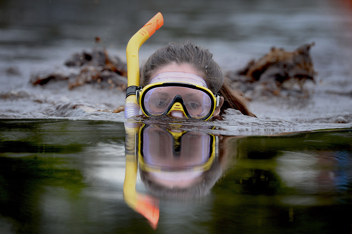 bog snorkelling