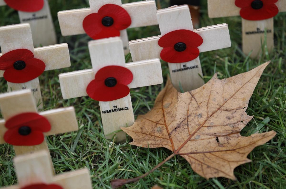World War One Poppy