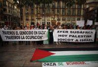 BDS Gaza Israel Palestine