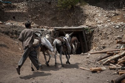 coal mining donkeys pakistan