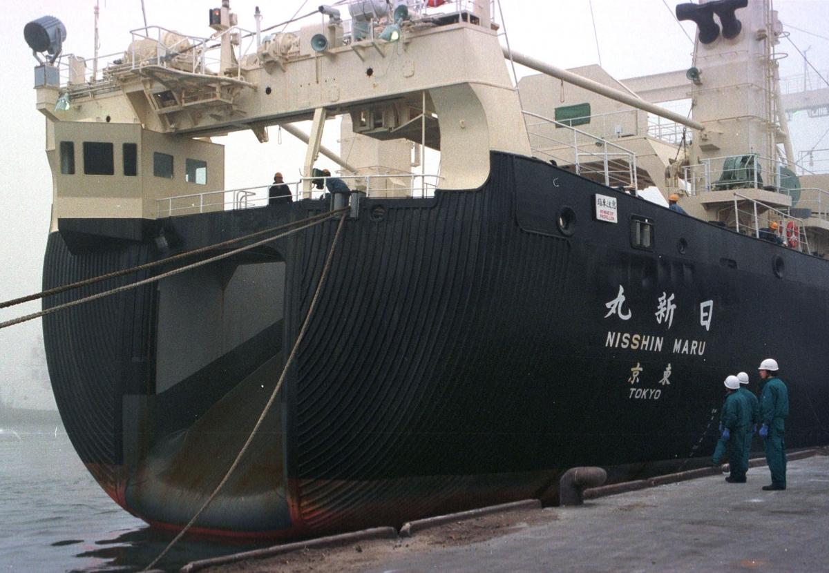 MV Nisshin Maru