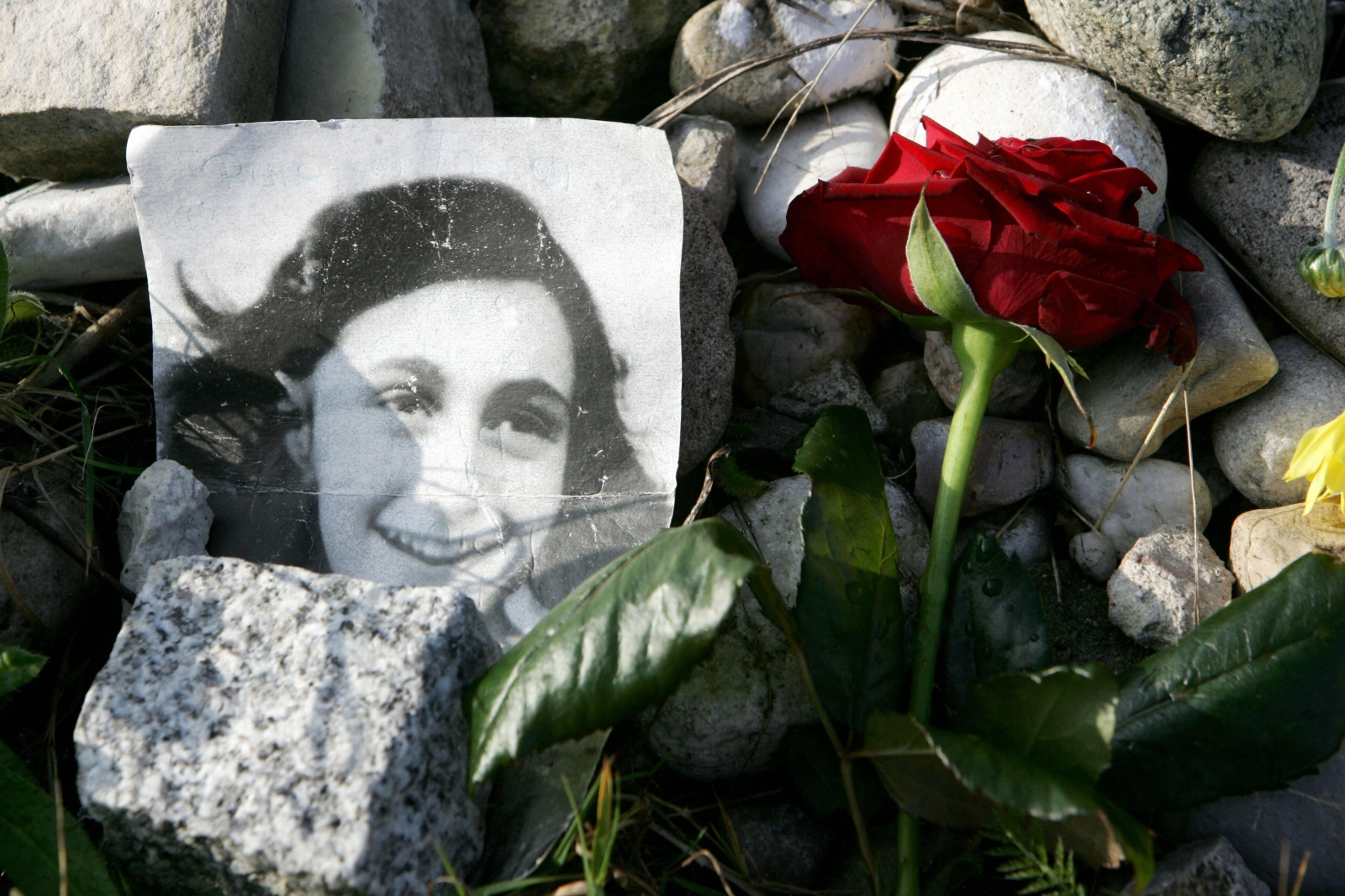 Biographical essay of anne frank