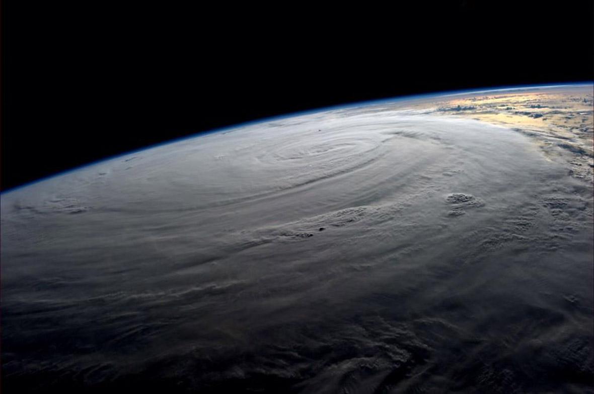 typhoon halong