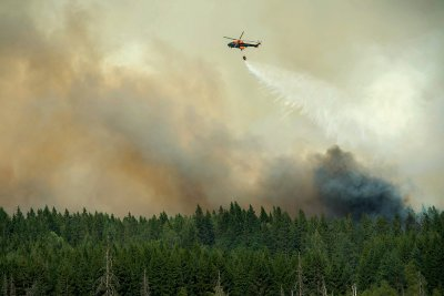 sweden forest fire