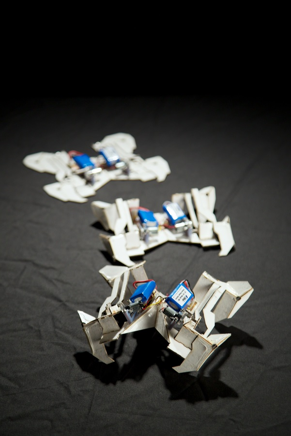 The origami robot at three different stages of self-folding