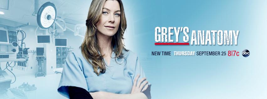 Greys anatomy season 11