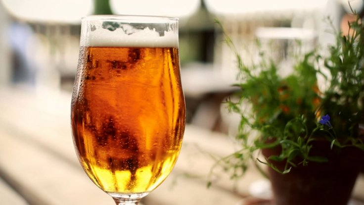 Great British Beer Festival: Exploring London's Booming Craft Brewing Sector