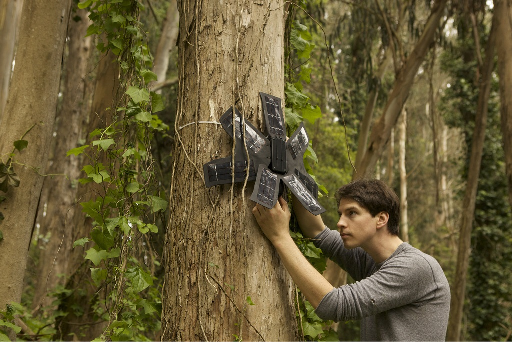 Recycled smartphone can be used in conservation effort to protect rainforests from loggers and poachers