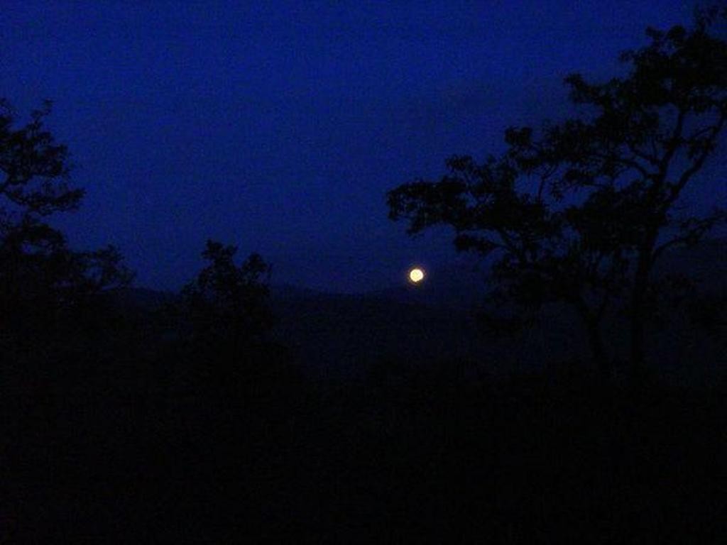 Sabrimala celestial light