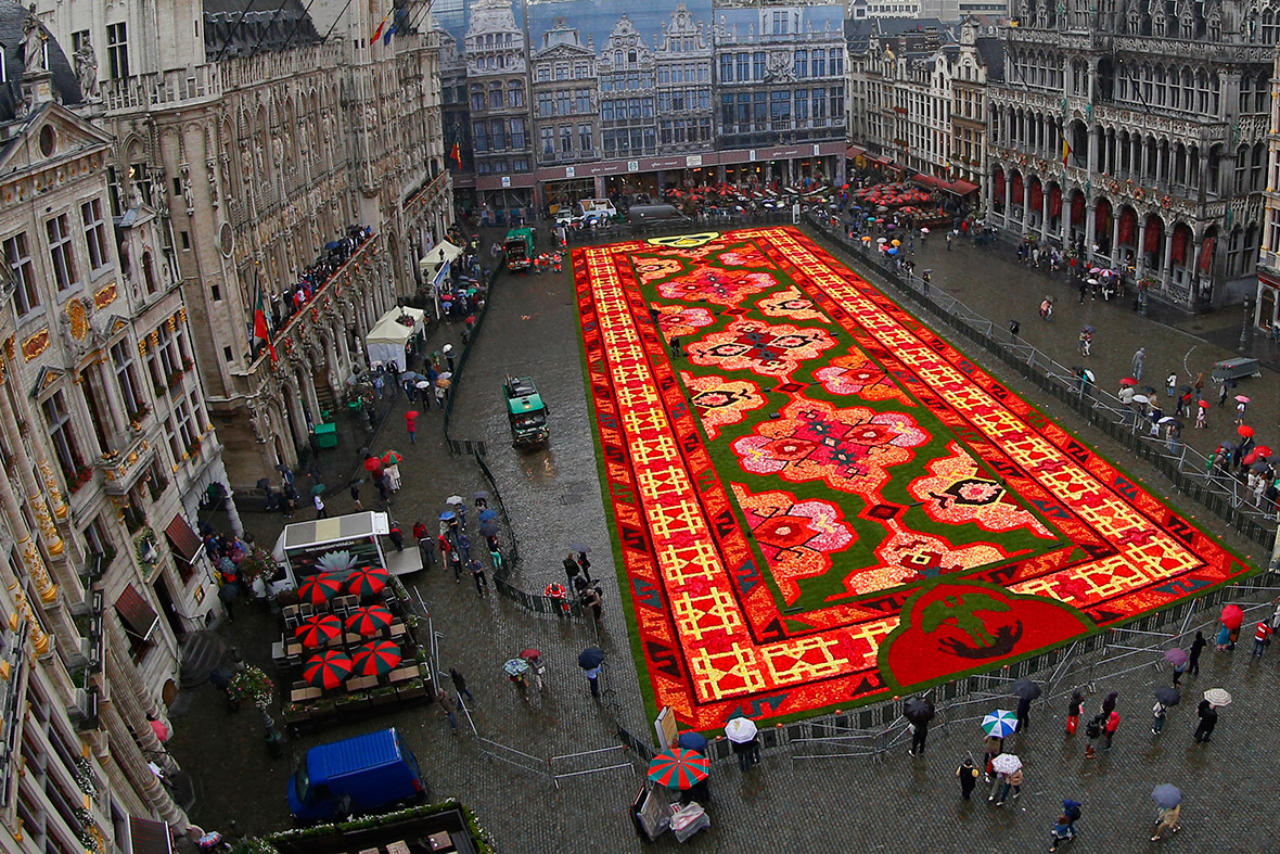 Giant Flower Carpet On The Grand Place In Brussels Pays