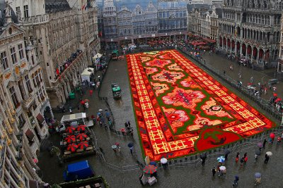 brussels grand place flower carpet 2014