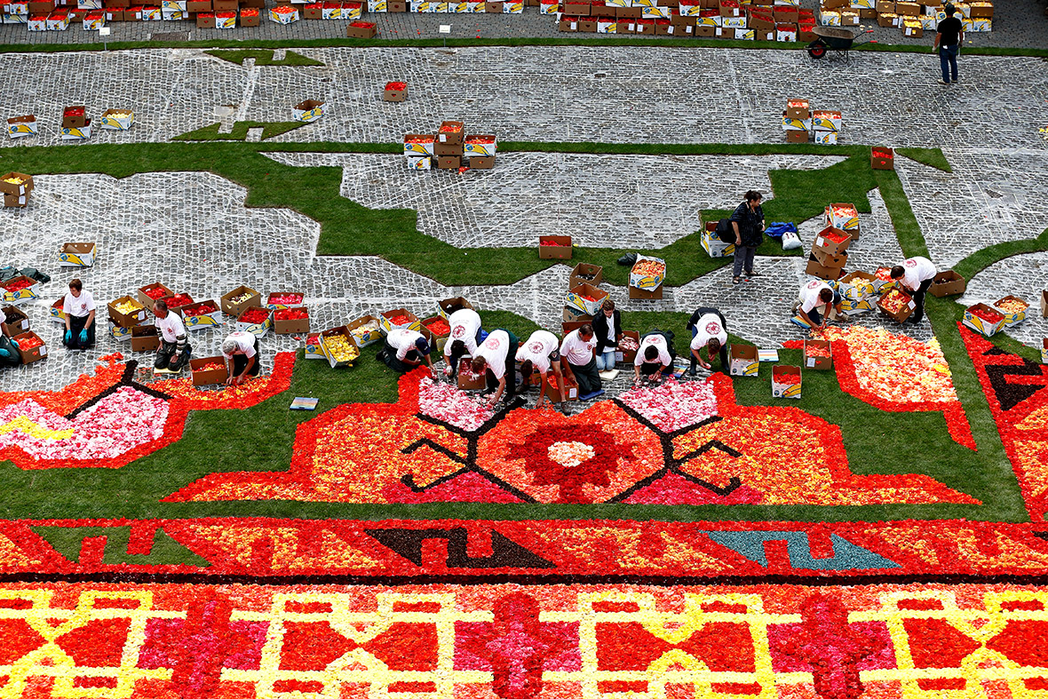 brussels grand place flower carpet 2014