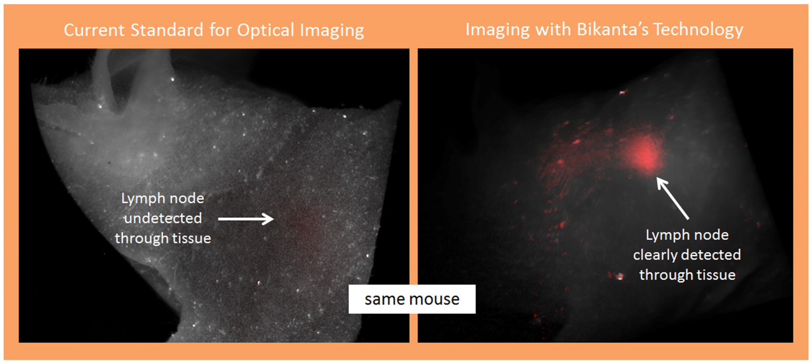 How nanodiamonds are able to locate a lymph node in a mouse that today's technology could not detect