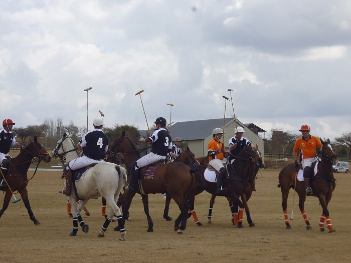 Some members of the South African Polo Association and their riders