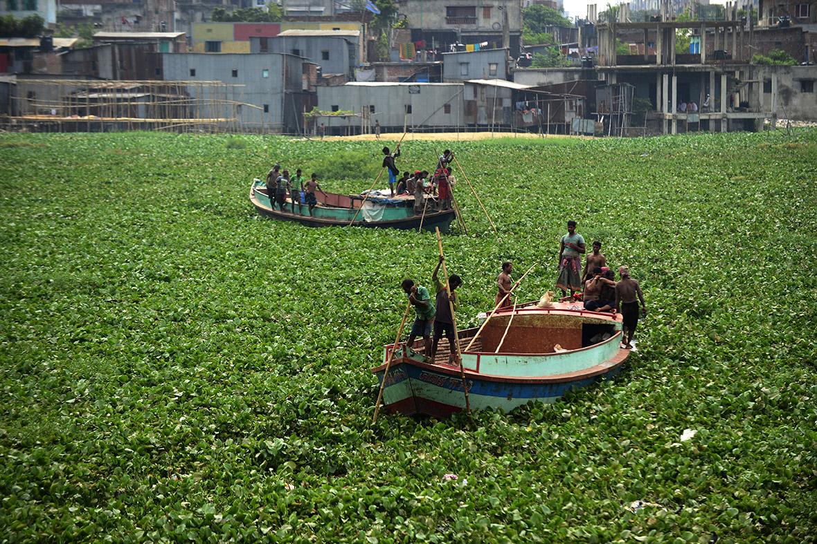 bangladesh water pollution