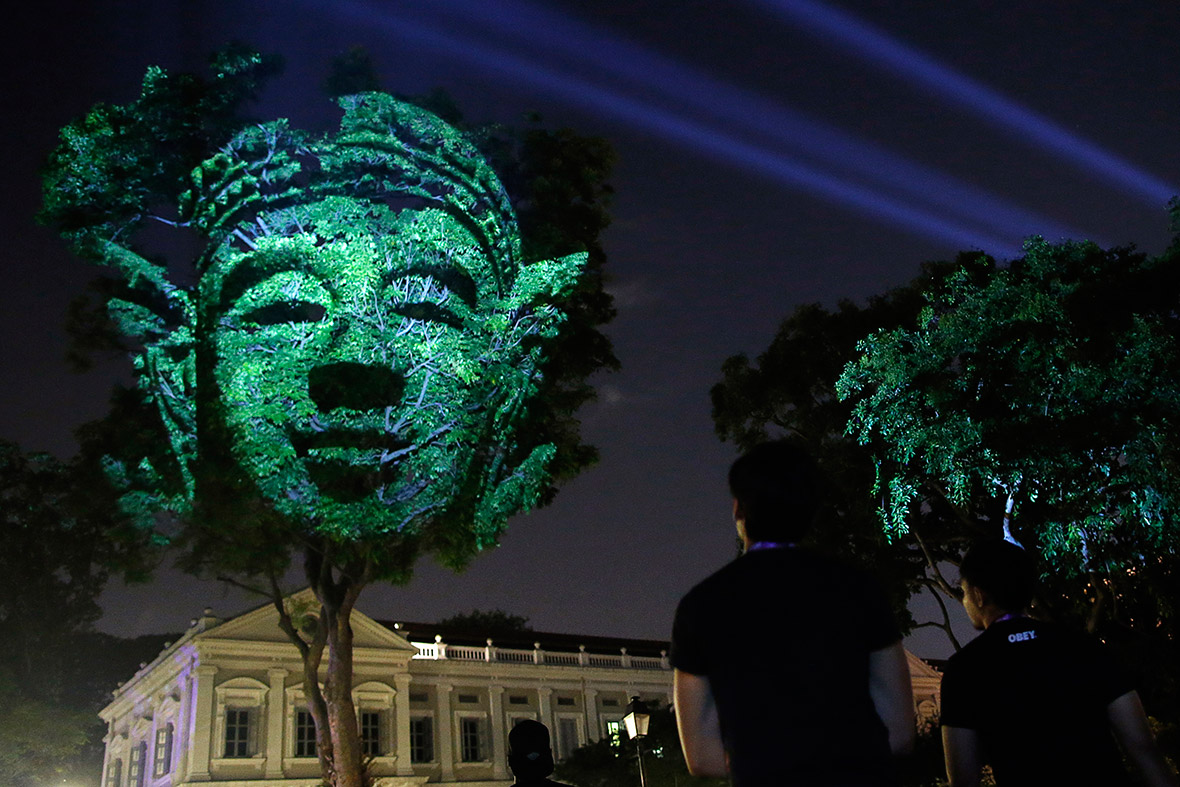 tree face projection