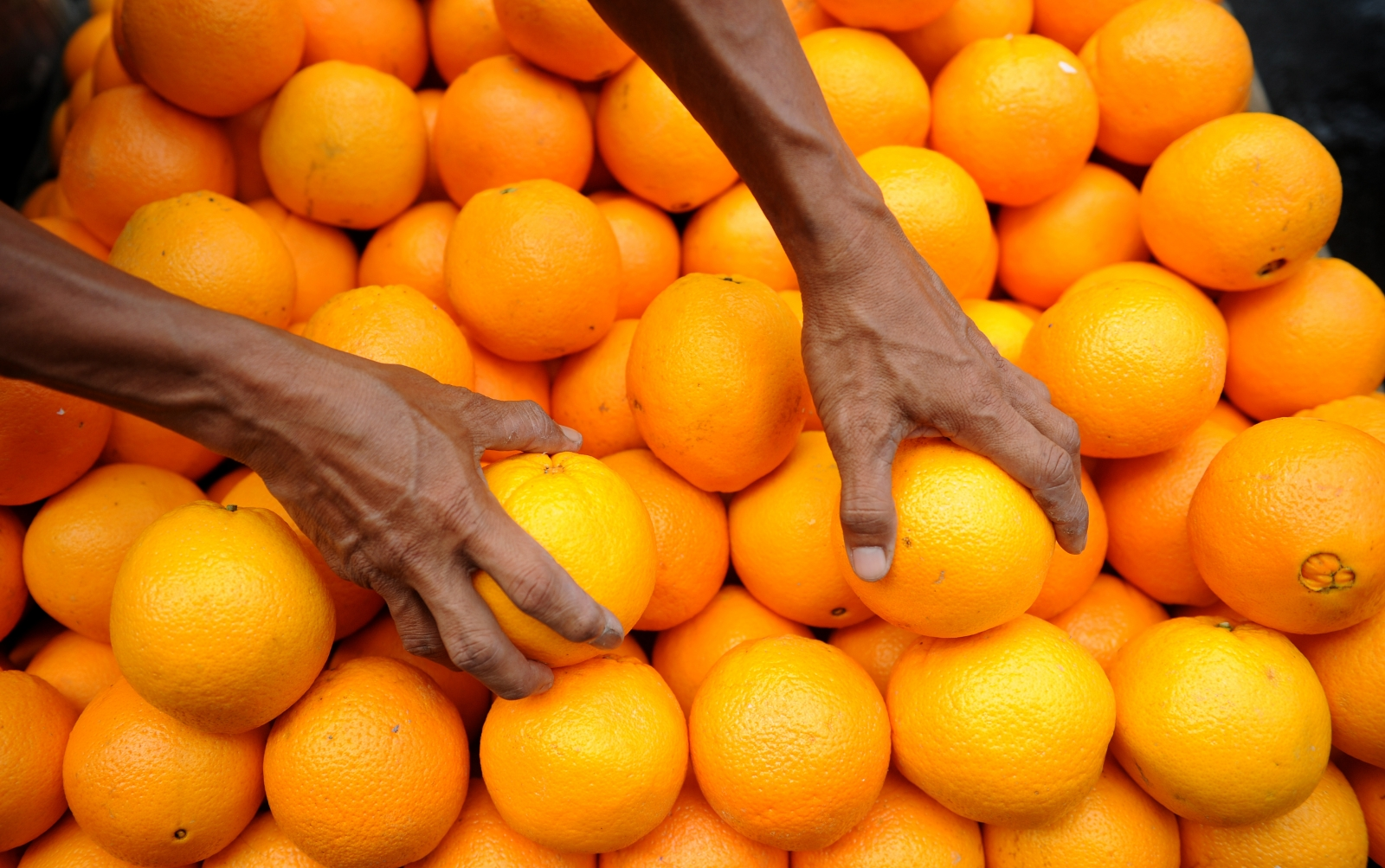 Man pelted to death with oranges during row on farm in Limpopo, South Africa