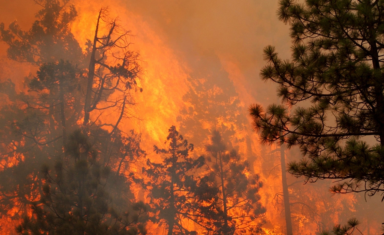 Wildfire rages in Oregon. (Getty)